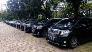 Sewa mobil mewah, Rental mobil mewah, sewa mobil pengantin, rental mobil pengantin, wedding car jakarta, rental mobil alphard